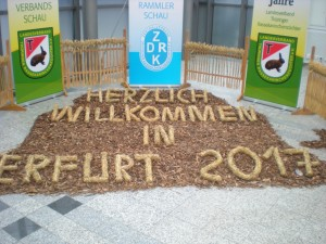 Eingang Erfurt 2017